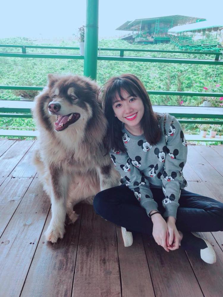 Từ khi cưới Trấn Thành, Hari Won không chỉ có gu thời trang vượt bậc mà còn khiến cho thời trang cặp đôi của họ ấn tượng hơn trong mắt của công chúng.