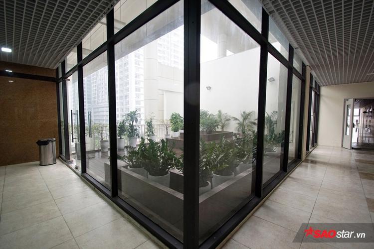 Khuôn viên cây xanh ở hành lang các tầng.