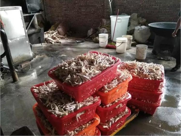 Theo biên bản làm việc, cục an toàn thực phẩm đã thu giữ 1,5 tấn chân gà nấu chín, 500kg chân gà đông lạnh, 2 bộ máy móc, 10 thùng hydrogen peroxide,axit cacbonic cùng các loại phẩm màu, gia vị cấm khác.