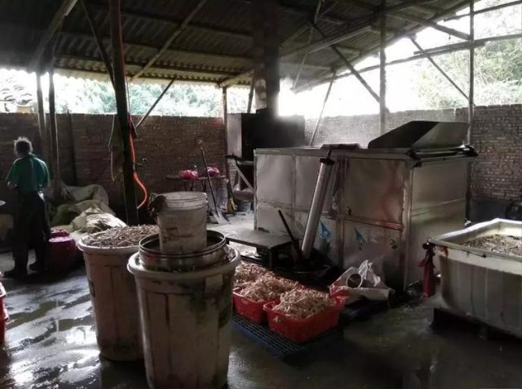 Theo điều 125, luật an toàn thực phẩm của Trung Quốc, nếu cơ sở sản xuất thực phẩm có sử dụng chất cấm hay nơi sản xuất không hợp vệ sinh thì cơ sở đó sẽ bị cơ quan chức năng tịch thu máy móc, thiết bị cũng như những nguyên liệu bất hợp pháp. Ngoài ra, cơ sở đó còn bị phạt hành chính từ 5.000 tệ cho tới 50.000 tệ (khoảng 18 - 180 triệu đồng).