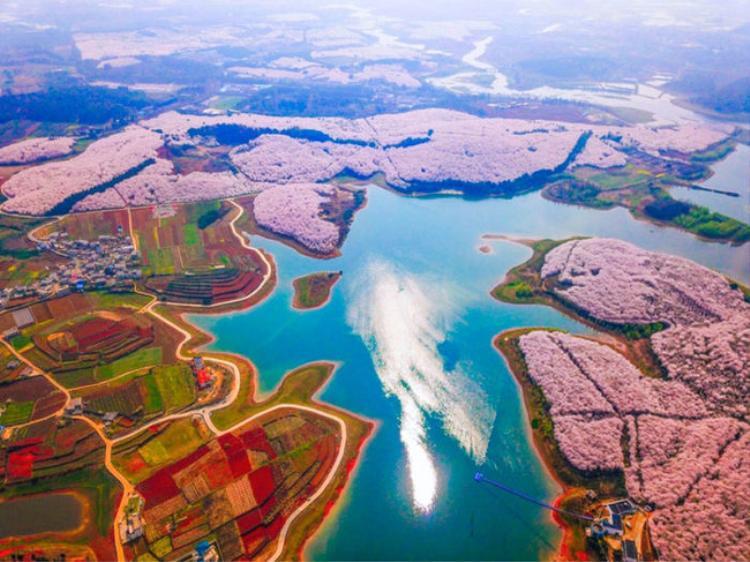 6. Ngôi làng phủ một màu hồng lãng mạn mỗi khi hoa anh đào nở. Ảnh: ©Prostoilogin