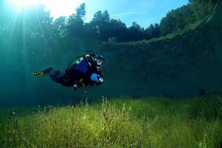 Một hồ nước tại Áo trong đến mức có thể nhìn thấy được cả cây cối trên bờ. Ảnh: Flickr