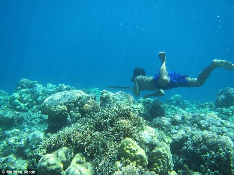 Tất cả những gì người Bajau cần trong mỗi chuyến lặn chỉ đơn giản là một vật nặng buộc quanh eo và một cặp kính lặn bằng gỗ. Ảnh:Melissa Ilardo