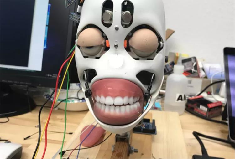 Đây là đầu của một phiên bản sexbot khi chưa ghép phần mặt. Nó có giá 10.000 USD.