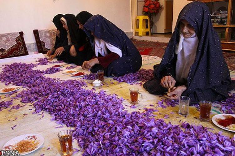 Nhụy hoa huệ Tây  saffron giá đắt trên trời có công dụng thực sự với làm đẹp như thế nào?