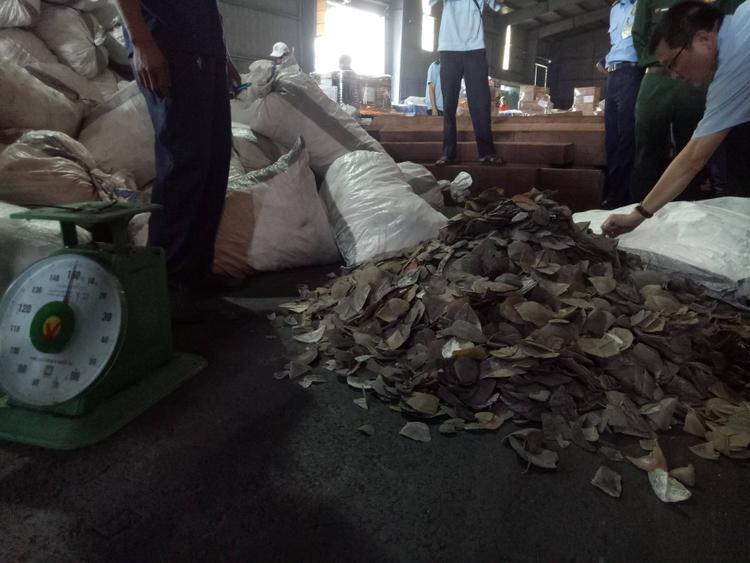 Lô hàng nhập lậu bị cơ quan phát hiện ở cảng Cát Lái.