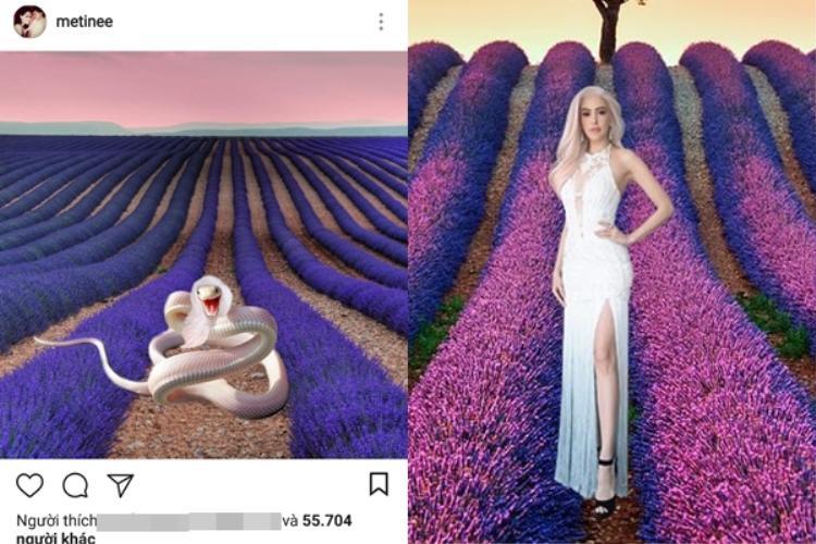 Sau khi có kết quả tập 11, Lukkade đã đăng ảnh lên Instagram cá nhân để đá đểu, ám chỉ Rita là rẵn độc trong vườn lavender.
