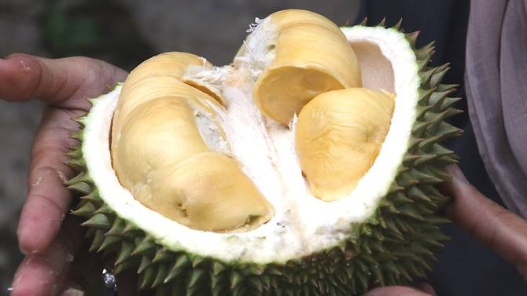 Mùi của quả sầu riêng khá khó chịu. Ảnh: CNA