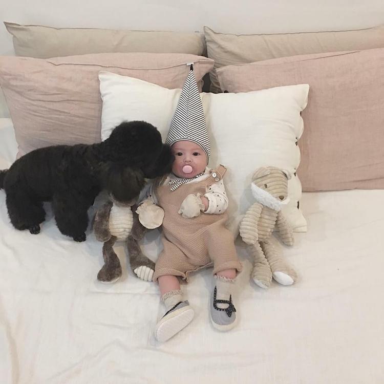 Hot mom Heo Mi Nhon gây sốt mạng xã hội với câu hỏi có nên nuôi chó khi nhà có em bé hay không?