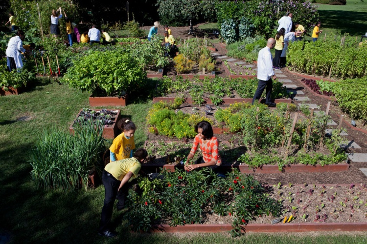 Ngay cạnh Vườn trẻ em là Khu vườn nhà bếp được cựu Đệ nhất phu nhân Michelle Obama trồng năm 2009. Khu vườn rộng 260 m2 này tạo ra nhiều loại trái cây theo mùa, rau và thảo dược. Tất cả thực phẩm không dùng tới sẽ được gia đình Tổng thống tặng cho các tổ chức từ thiện địa phương.