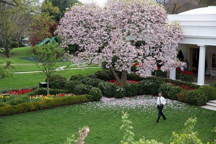 Giáp bậc thềm cổng phía nam là khu vườn được thành lập vào thời cố Tổng thống John F. Kennedy. Phía đông là Khu vườn Jackie Kennedy. Phía Tây là Vườn Hồng - nơi Tổng thống thường phát biểu những quyết định quan trọng. Kể từ khi được cải tạo mới, Vườn Hồng còn là nơi tổ chức đám cưới, một bữa tiệc cấp nhà nước trang trọng hay tổ chức các cuộc họp báo.
