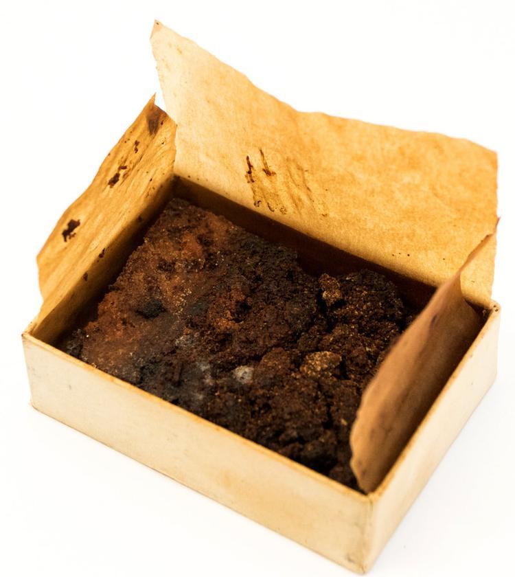 Bánh cưới của Nữ hoàng Elizabeth không còn tươi khi lưu giữ trong hộp thời gian dài