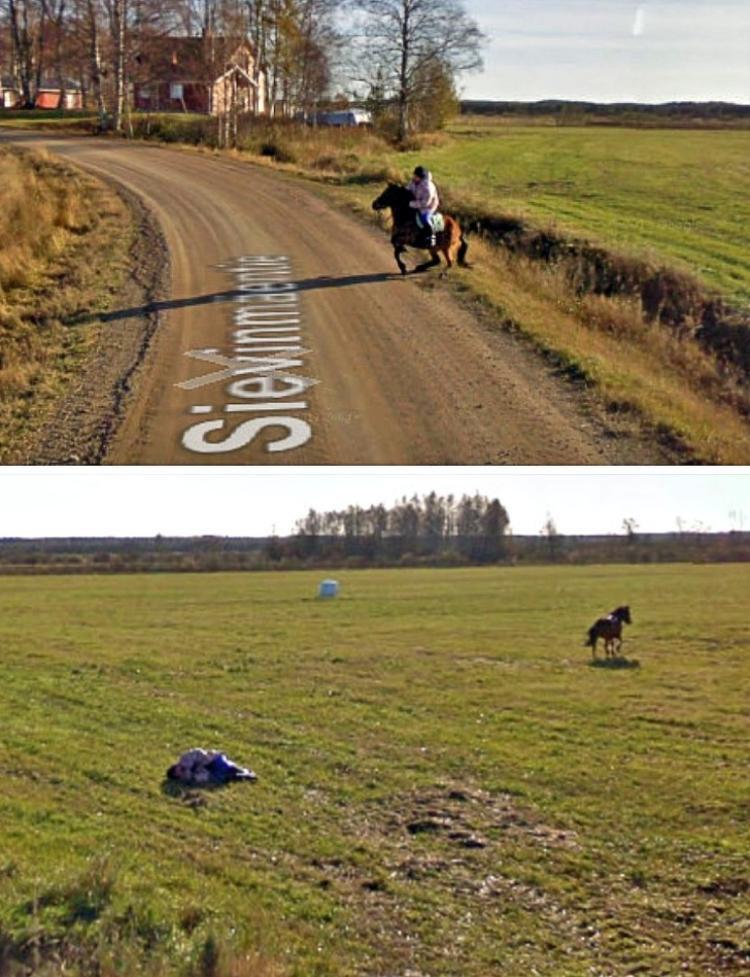 Khi một chiếc xe Google Street View gặp một chú ngựa.