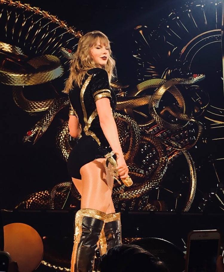 Rắn có ở khắp mọi nơi trên sân khấu, thậm chí cả trên outfit lẫn chiếc micro của Taylor!