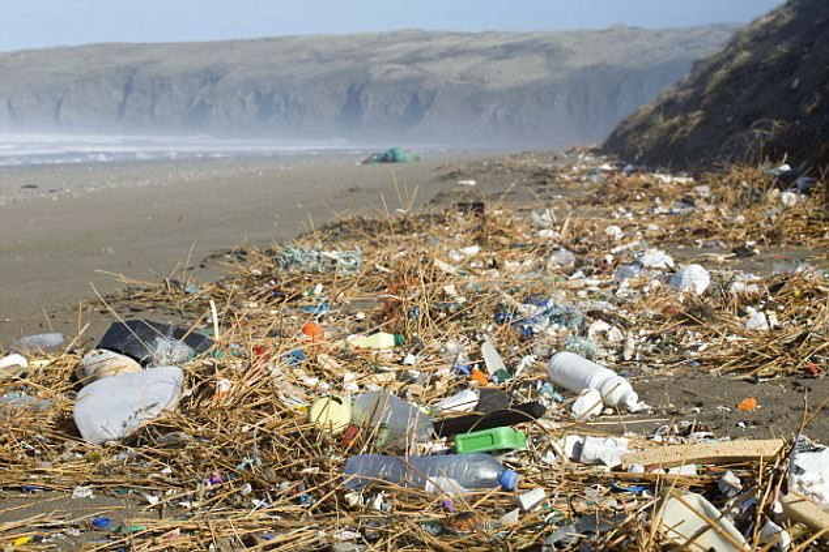 Hòn đảo toàn rác là rác.