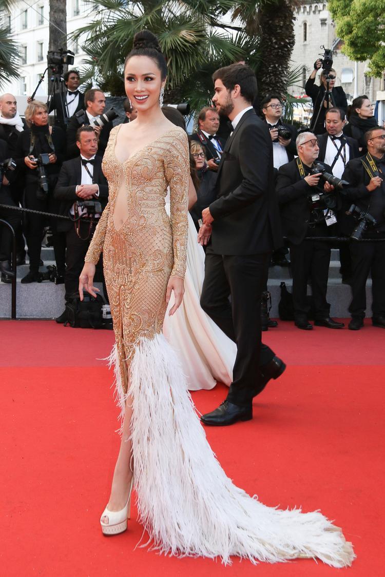 Vũ Ngọc Anh cho biết, cô vô cùng hạnh phúc khi được vinh dự mời tham dự liên hoan phim Cannes danh giá tại Pháp. Bởi với Vũ Ngọc Anh, đây là cơ hội rất tốt để cô được học hỏi, trau dồi kiến thức và đặc biệt là tiếp xúc và và làm quen với bạn bè quốc tế.