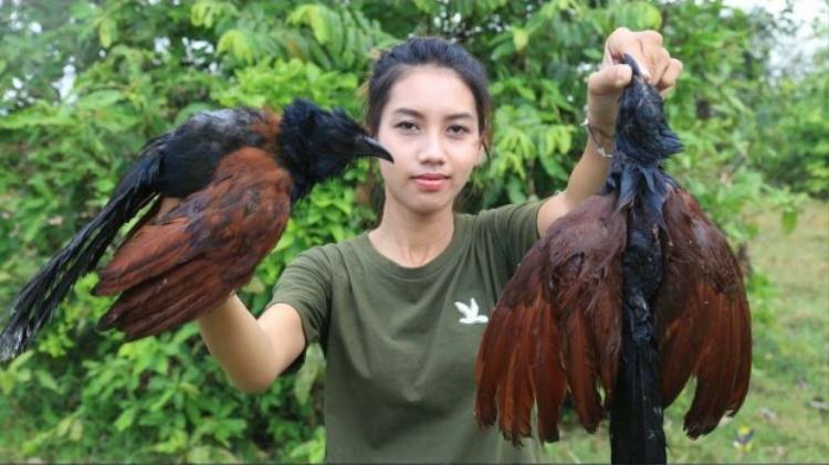 """Một vài loài chim bị đưa vào """"thực đơn""""."""