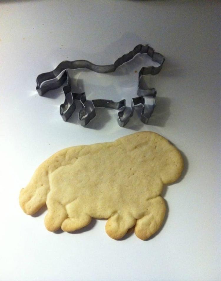 """Bánh hình ngựa """"phiên bản lỗi""""."""