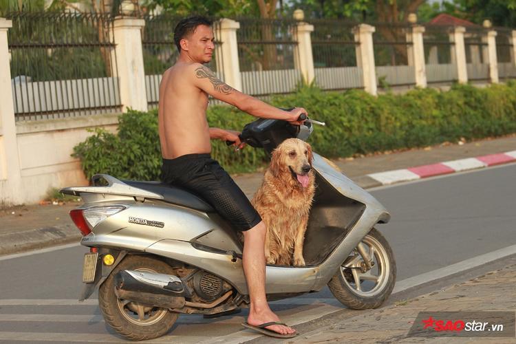 Chú chó vui vẻ ngồi trên xe máy, chuẩn bị trở về nhà sau khi đã tắm mát.