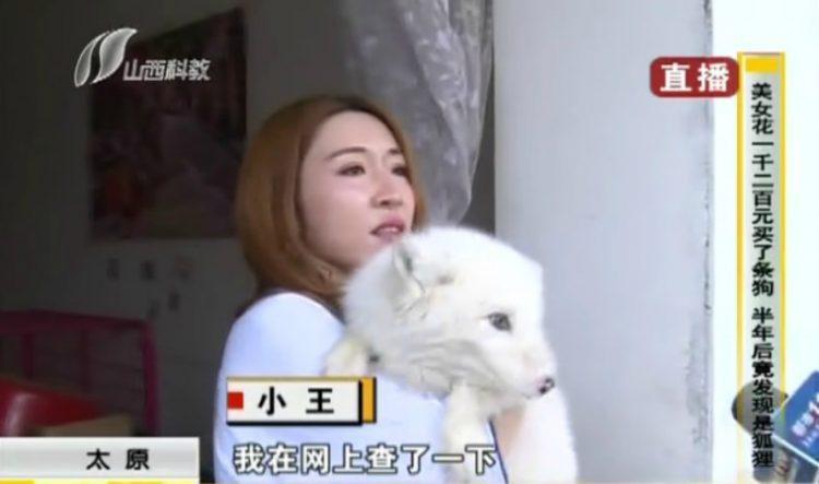 Sau 3 tháng nuôi dưỡng, cô Wang dần nhận ra điểm khác lạ của con vật cưng.