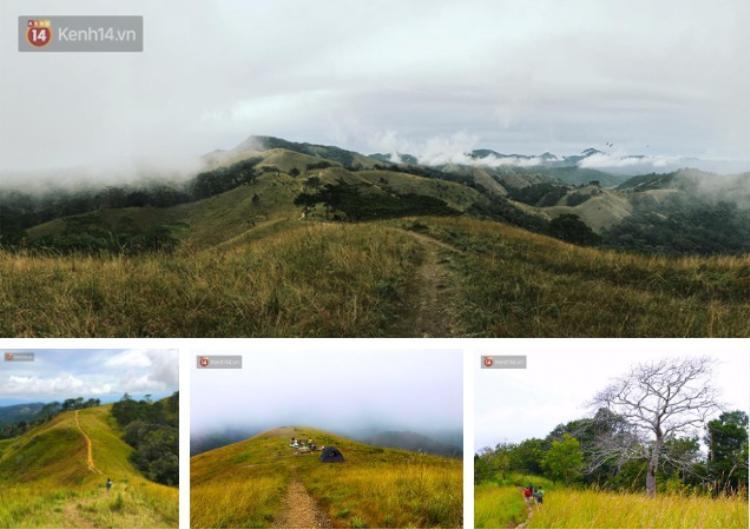 Cung đường trekking Tà Năng - Phan Dũng đi qua 3 tỉnh Lâm Đồng, Ninh Thuận và Bình Thuận, với tổng chiều dài 55 km. Đây là địa điểm thường được dân phượt rủ nhau chinh phục. Ảnh: Q.T