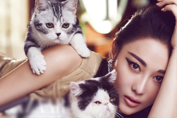 """Trương Hinh Dư - người thủ vai Tiêu Thục phi trong """"Võ Tắc Thiên"""" 2015 và cũng là bạn gái cũ của Lý Thần"""