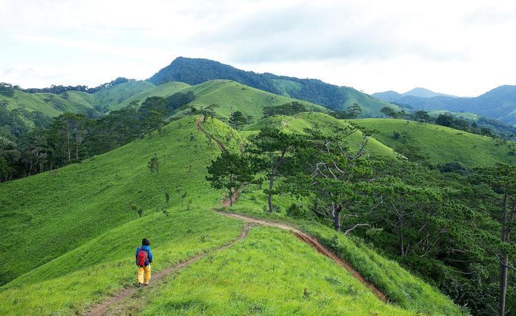 Cung đường Tà Năng - Phan Dũng đẹp hút hồn nhưng là thách thức lớn đối với dân phượt vì địa hình hiểm trở, dễ bị lạc.