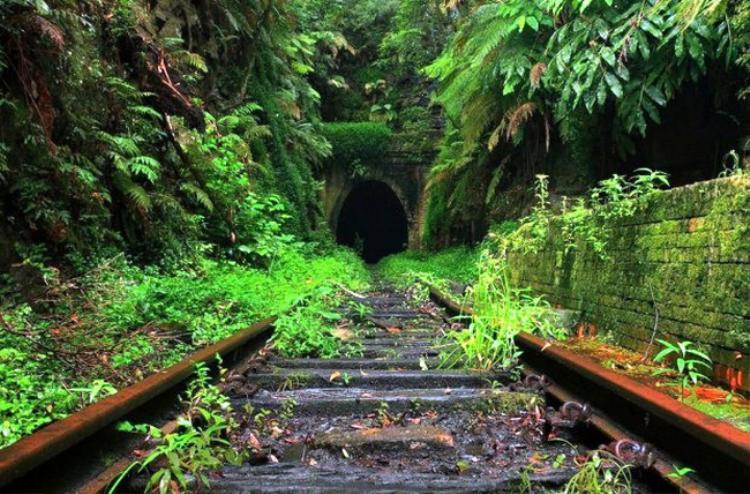 Đường hầm tàu hỏa cũ ở Helensburgh, Scotland tồi tàn và không cách quá xa nhà ga đường sắt hiện tại. Đường hầm Helensburgh cũ mở cửa vào ngày 3/10/1888 và đóng cửa vào ngày 30/5/1915. Đây là địa điểm lý tưởng để du khách có thể khám phá một cộng đồng đom đóm nhỏ sống bên trong.