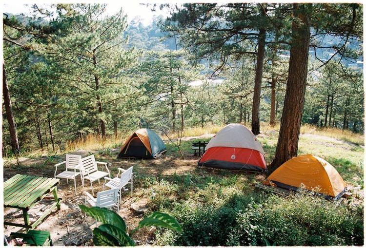 Nếu đi cùng bạn bè, hãy thuê lều và đốt lửa cắm trại ở sân sau nhà. Đi với người thương, hãy book ngay một phòng riêng tư với tường làm bằng kính, có view nhìn ra thung lũng toàn cây xanh. Ảnh: Đào Phương Linh.