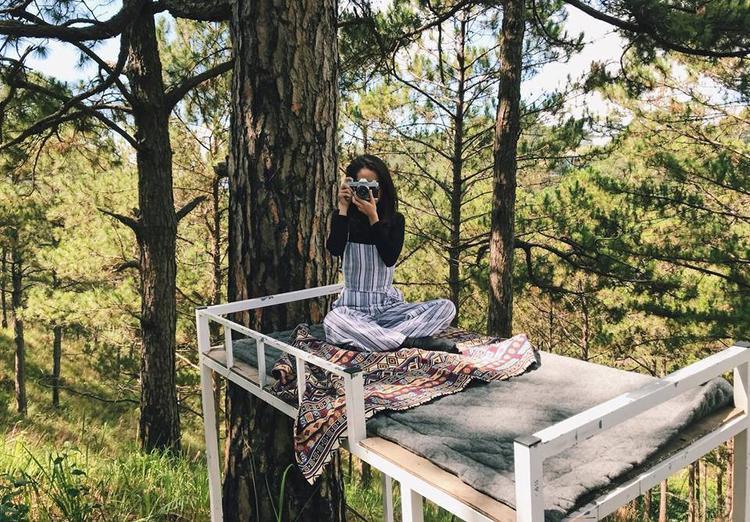 """Ban ngày không biết làm gì? Hãy ra khu vực rừng thông gần đó, leo lên những chiếc giường tầng và chụp vài bức ảnh """"sống ảo"""" nhé. Trông bạn sẽ như đang ở Chiangmai hoặc nơi nào đó với đồi núi trùng điệp đấy. Ảnh: Tho Trauma."""
