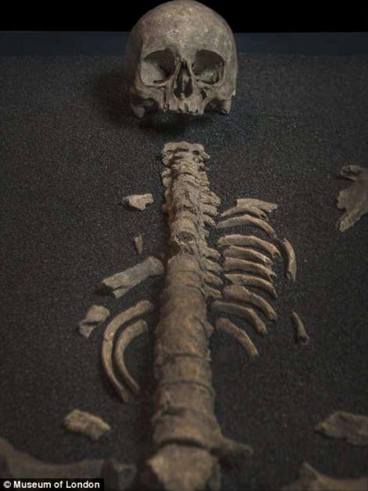 Trong chiếc quan tài, các nhà khảo cổ học tìm thấy một bộ xương không còn nguyên vẹn của một người phụ nữ La Mã có niên đại 1.600 tuổi. Cách đó không xa, họ cũng tìm thấy một bộ xương trẻ con, được cho là con của người phụ nữ này.