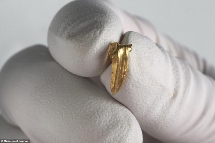Ngoài những mẩu xương nhỏ, các nhà khảo cổ còn tìm thấy một vài mảnh vàng có thể là khuyên tai và một viên đá quý được khắc hình ảnh châm biếm.