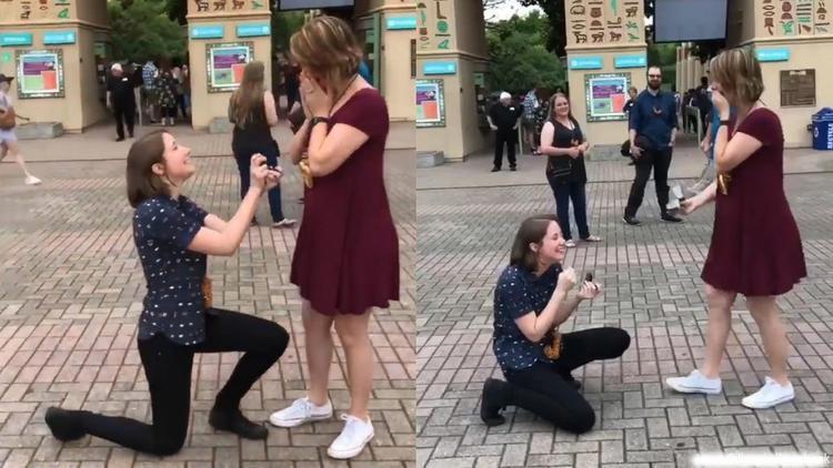 Cả hai bất ngờ khi cùng có ý định cầu hôn đối phương
