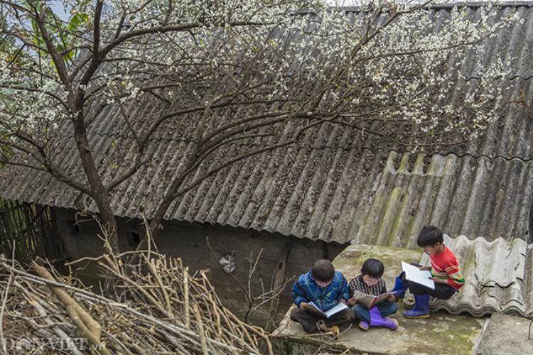 Hình ảnh trẻ em miền núi luôn là đề tài và dễ tạo hình ảnh đẹp cho các nhiếp ảnh gia. Một hình ảnh được chụp tại Mộc Châu, tỉnh Sơn La.