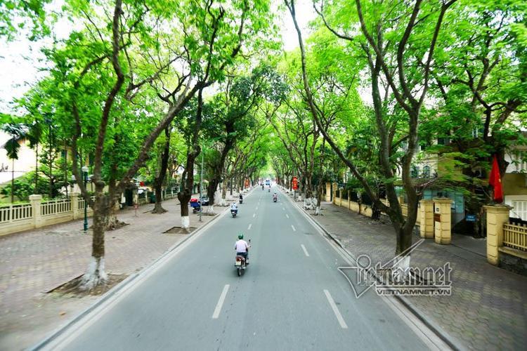Đường Phan Đình Phùng - con đường có 3 hàng cây