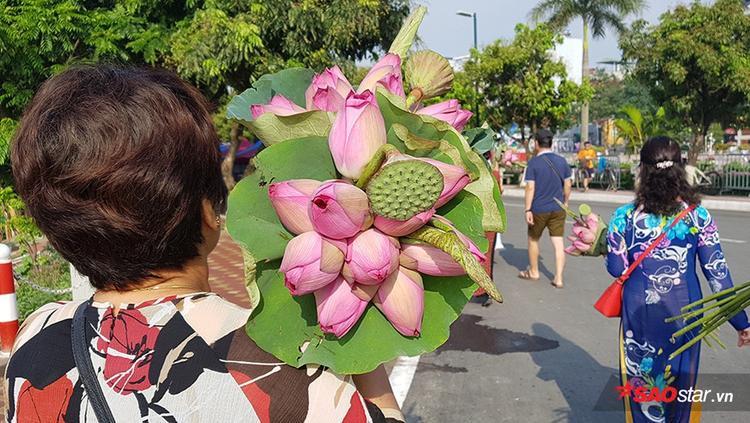 Hoa sen theo chân người dân tràn xuống phố.