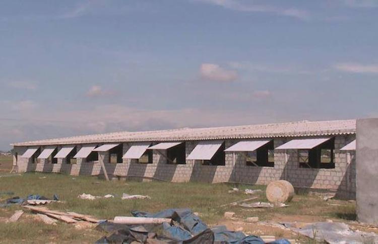 Trang trại gia đình ông Hải, nơi xảy ra vụ việc.