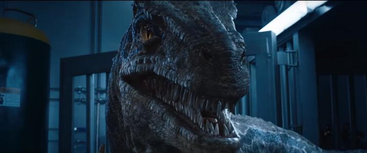 Loạt mỹ nhân Việt bị cuốn hút bởi Chris Patt trong Jurassic World: Thế giới khủng long 2