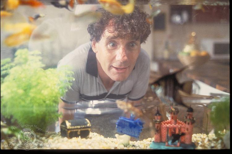 Một số hình ảnh trong phim