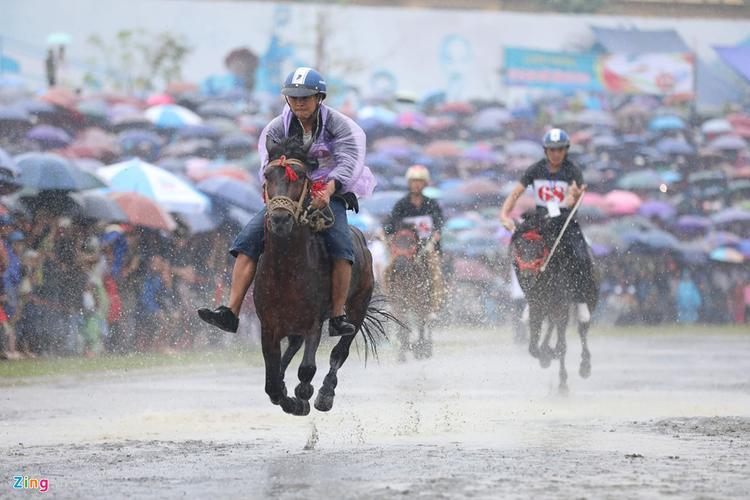 Có kỵ sĩ mặc áo mưa mỏng thi đấu, có người lại để mình ướt để dễ dàng điều khiển ngựa hơn.