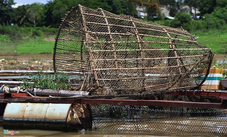 Ngư dân Huỳnh Tấn Hùng là người đứng thứ 2 về thiệt hại với trên 100 tấn cá lăng, diêu hồng, chép giòn… bị chết, thiệt hại gần 5 tỷ đồng.