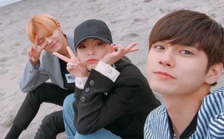 Nhóm nhỏ The Heal (từ trái qua : Daehwi, Heize, Sungwoo)