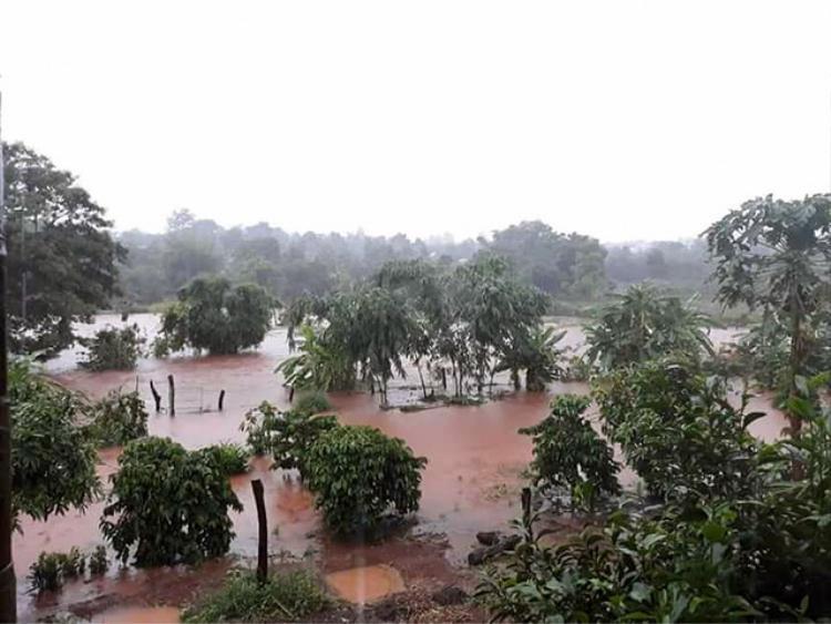 Nông sản người dân ngập trong dòng nước