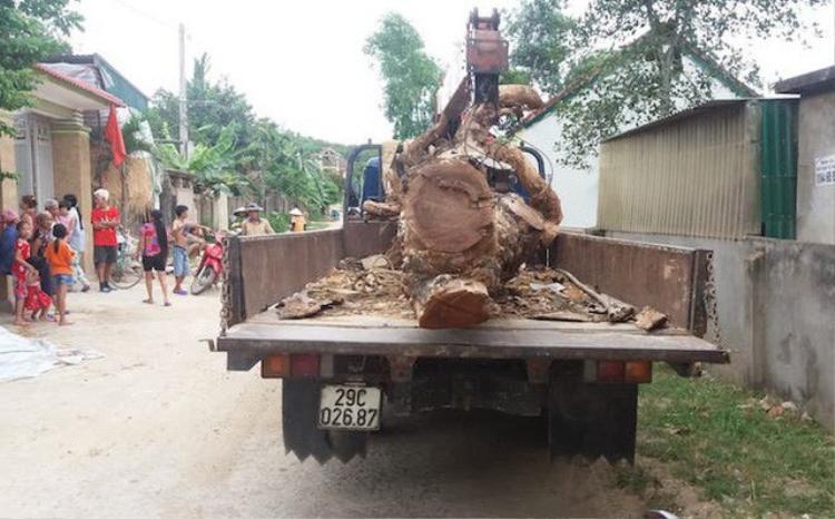 Xe ô tô cẩu cùng tang vật là cây mít tại hiện trường.