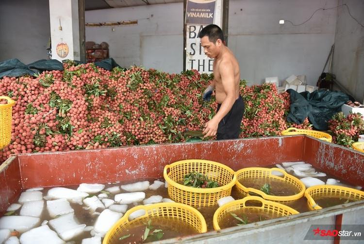 Theo kinh nghiệm của chủ cửa hàng kinh doanh vải lâu năm, việc bảo quản trong đá cũng như ngâm đá lạnh sẽ giúp quả vải tươi ngon từ 2 đến 4 ngày.