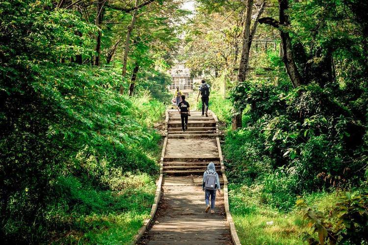 Đây chính là con đường thơ mộng được các bạn sinh viên ví như cảnh đẹp xứ sở Kim Chi nối từ giảng đường Cát Tường qua thẳng giảng đường Phượng Vỹ.