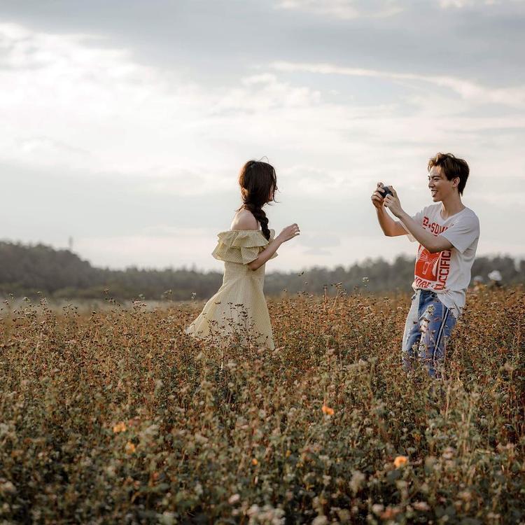 Muốn biết Đà Lạt đẹp đến thế nào, cứ xem qua một loạt các MV Vpop này sẽ rõ!