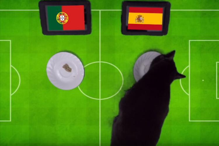 Tiên tri mèo đen dự đoán kết quả trận Bồ Đào Nha vs Tây Ban Nha.