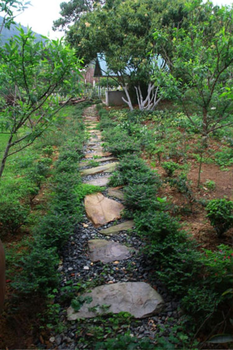Đường đi nhỏ bằng những phiến đá trong khuôn vườn rộng mênh mông, với hai bên là nhiều loại cây ăn trái.