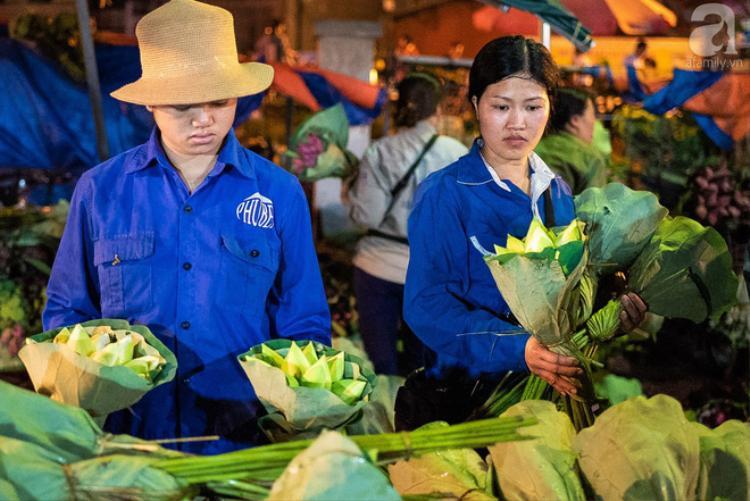 Giá hoa sen được bán tại chợ có giá giao động từ 20 ngàn đồng đến 40 ngàn đồng tùy từng loại